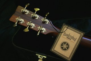 Headstock and Tag
